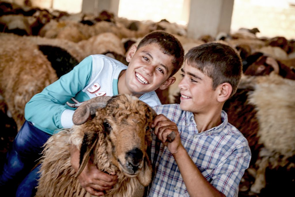 Two boys with a goat.